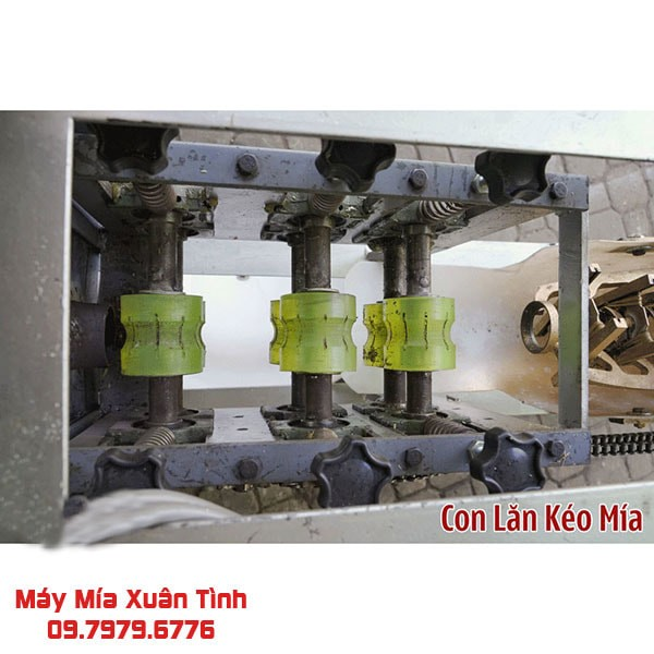 May Bao Vo Mia Tu Dong 1 Cay Xuan Tinh 4