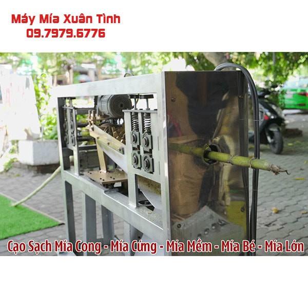 May Bao Vo Mia Tu Dong 1 Cay Xuan Tinh 8