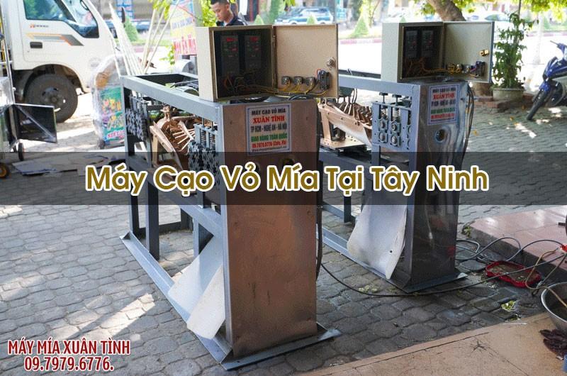May Cao Vo Mia Tai Tay Ninh 1